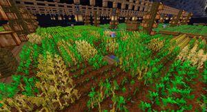 OneBlock: Advanced Minecraft Guide